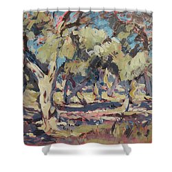 Olive Grove Along Marmari Beach Paxos Shower Curtain