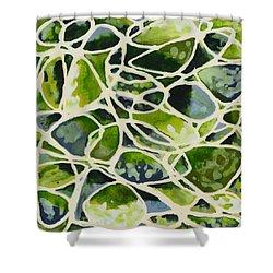 Olive Pot Shower Curtain