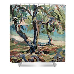 Olive Trees Along Marmari Beach Paxos Shower Curtain