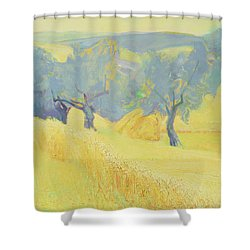 Olive Trees In Tuscany Shower Curtain by Antonio Ciccone