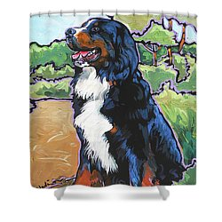 Oliver Shower Curtain by Nadi Spencer