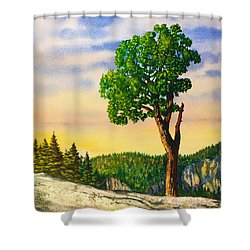 Olmsted Point Tree Shower Curtain by Douglas Castleman