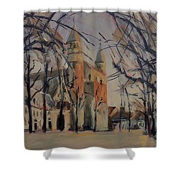 Olv Square On A Sunny Winter Afternoon Shower Curtain