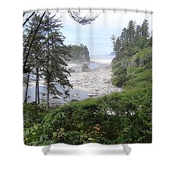 Olympic National Park Beach Shower Curtain