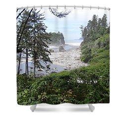 Olympic National Park Beach Shower Curtain by Tony Mathews