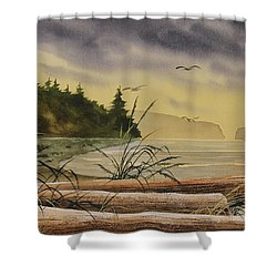 Shower Curtain featuring the painting Olympic Seashore Sunset by James Williamson