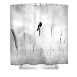 Shower Curtain featuring the photograph Omen by John Poon