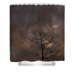 Ominous Shower Curtain