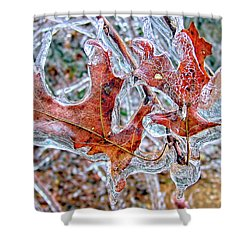 On A Cold Day Shower Curtain by Susan Leggett