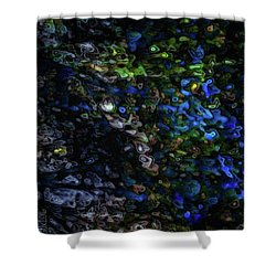 On A Cold Winter Night Shower Curtain by Mimulux patricia no No