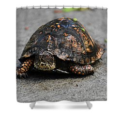 Shower Curtain featuring the photograph On A Mission by Skip Willits