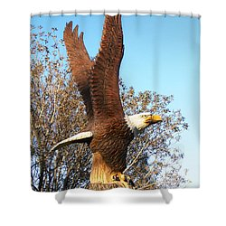 On Eagles Wings II Shower Curtain