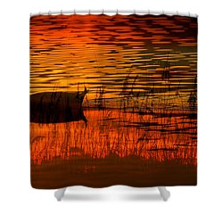 On Golden Pond Shower Curtain by David Lee Thompson