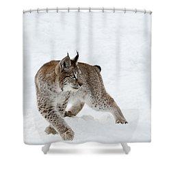On High Alert Shower Curtain by Sandra Bronstein