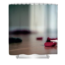 On Nature, Tragedy, And Beauty II Shower Curtain
