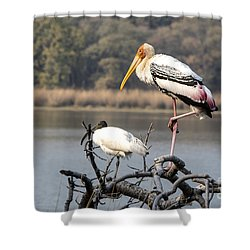 On One Leg Shower Curtain by Pravine Chester