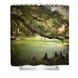 On Swamp's Edge Shower Curtain by Scott Pellegrin