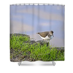 On The Banks Of The Yarkon Shower Curtain by Arik Baltinester
