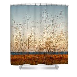 Shower Curtain featuring the photograph On The Beach by Milena Ilieva
