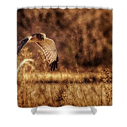 On The Hunt Shower Curtain by Annette Hugen