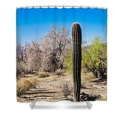 On The Ironwood Trail Shower Curtain