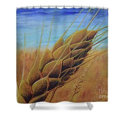 Shower Curtain featuring the painting On The Kanza by Lisa DuBois