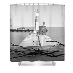 Shower Curtain featuring the photograph On The Lake Shore by Milena Ilieva