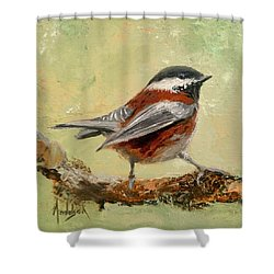 On The Lookout Shower Curtain by Barbara Andolsek