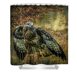 Shower Curtain featuring the photograph On The Lookout by Brian Tarr