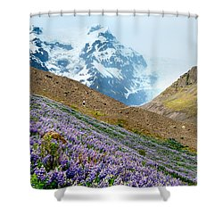On The Low Path Shower Curtain