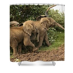 Shower Curtain featuring the photograph On The March by Gary Hall