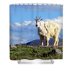 On The Mountain Top Shower Curtain by Karen Shackles