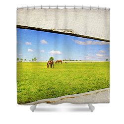 On The Other Side Shower Curtain by Darren Fisher