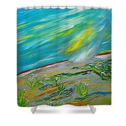 On The Planet. The Fall Of A Meteorite On The Planet Shower Curtain