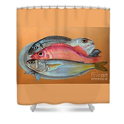 On The Platter Shower Curtain