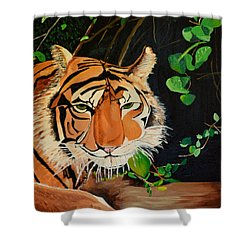 On The Prowl Shower Curtain by Donna Blossom