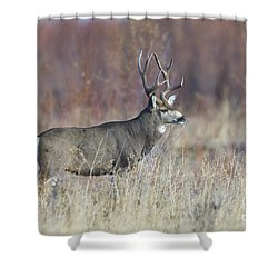 On The River Bank Shower Curtain