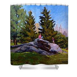 On The Rocks In Central Park Shower Curtain by Peter Salwen