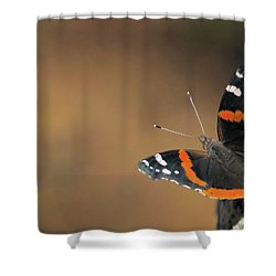 On The Rocks Shower Curtain by Karol Livote