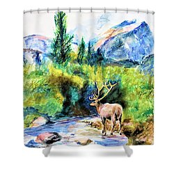 On The Stream Shower Curtain