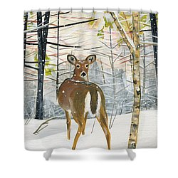 On The Trail Shower Curtain