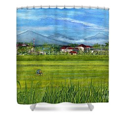 Shower Curtain featuring the painting On The Way To Ubud 3 Bali Indonesia by Melly Terpening