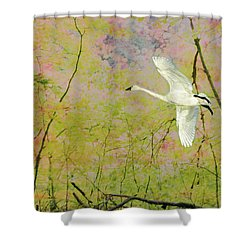 On The Wing Shower Curtain
