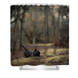 On The Woodlot Path Shower Curtain