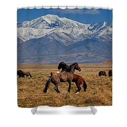 Onaqui Wild Horses Shower Curtain