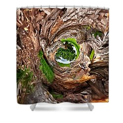 Shower Curtain featuring the photograph Once A Tree by Pennie  McCracken