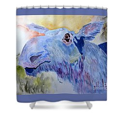 Once In A Blue Moose Shower Curtain