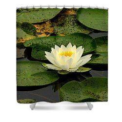 Once Upon A Lily Pad Shower Curtain