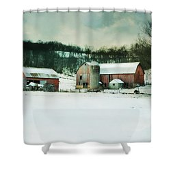 Shower Curtain featuring the photograph Once Was Special by Julie Hamilton