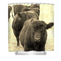 One At A Time Shower Curtain